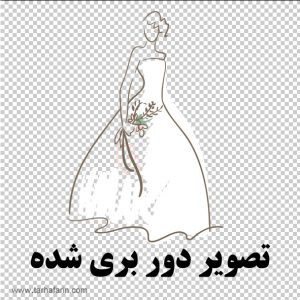 وکتور عروس png