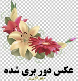 دانلود طرح گل و بوته دوربری