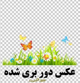 دانلود تصویر با کیفیت گل و پروانه