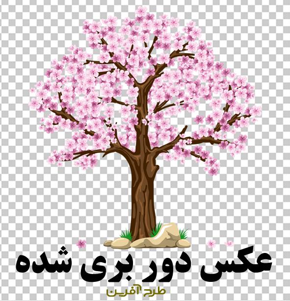 دانلود درخت بهاری PNG