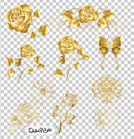 تصاویر با کیفیت دوربری شده گل رز طلایی