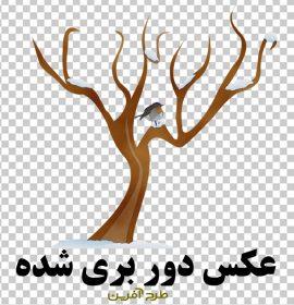دانلود وکتور درخت بدون برگ