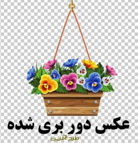 وکتور گلدان و گل png