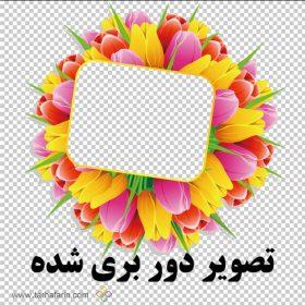 کادر عکس گل png