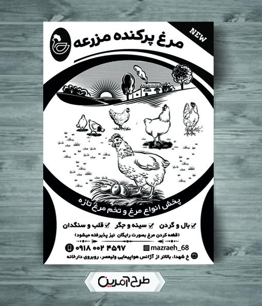 طرح تراکت ریسو فروشگاه مرغ و تخم مرغ